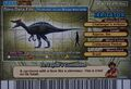 Irritator Card Eng S2 4th back