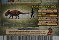 Brachyceratops Card Eng S2 4th back