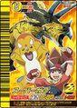 D-Team Max card 2