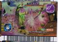 Earth Barrier Card 11