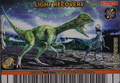 Light Recovery Card 2
