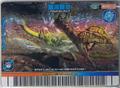 Aqua Whip Card 10