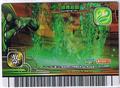 Emerald Garden Card 6