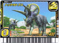 Triceratops Card 13