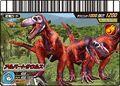 Albertosaurus Card