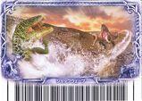 Shockwave Card 7