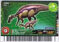 Maiasaura Card 4