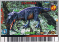 Gorgosaurus Card 3