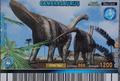 Camarasaurus Card 4