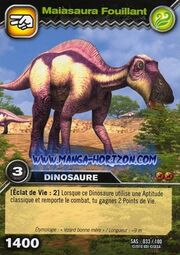 Maiasaura-Searching TCG Card (French)