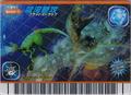 Aqua Whip Card 9