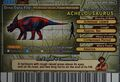Achelousaurus Card Eng S2 4th back