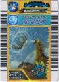 Aqua Whip Card 5