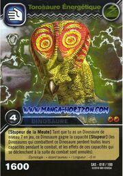 018-100-torosaure-energetique