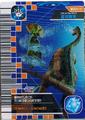 Aqua Whip Card 8