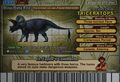 Triceratops Card Eng S2 4th back