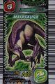 Maiasaura Card Eng S1 1st
