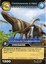 013-100-camarasaure-a-l-abri
