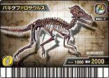 Pachycephalosaurus Skeleton Card 1