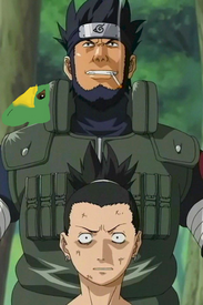Asuma and carcharo
