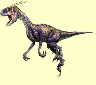 Allosaurus Jpg