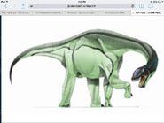 Camarasaurus drawing