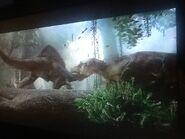 Spino vs tyrannosaurus