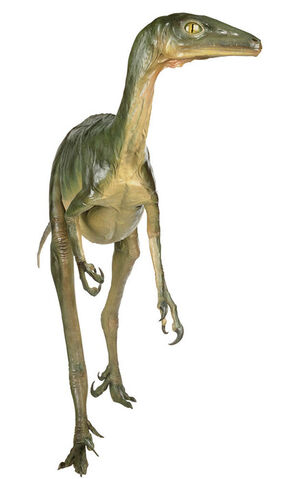 File:Troodon.jpg