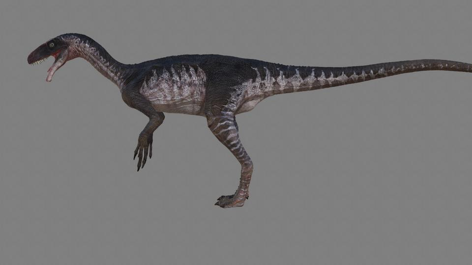 Ornitholestes | Dinosaur Revolution Wiki | FANDOM powered ... Dinosaur Revolution Allosaurus Broken Jaw