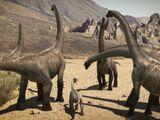 Cedarosaurus