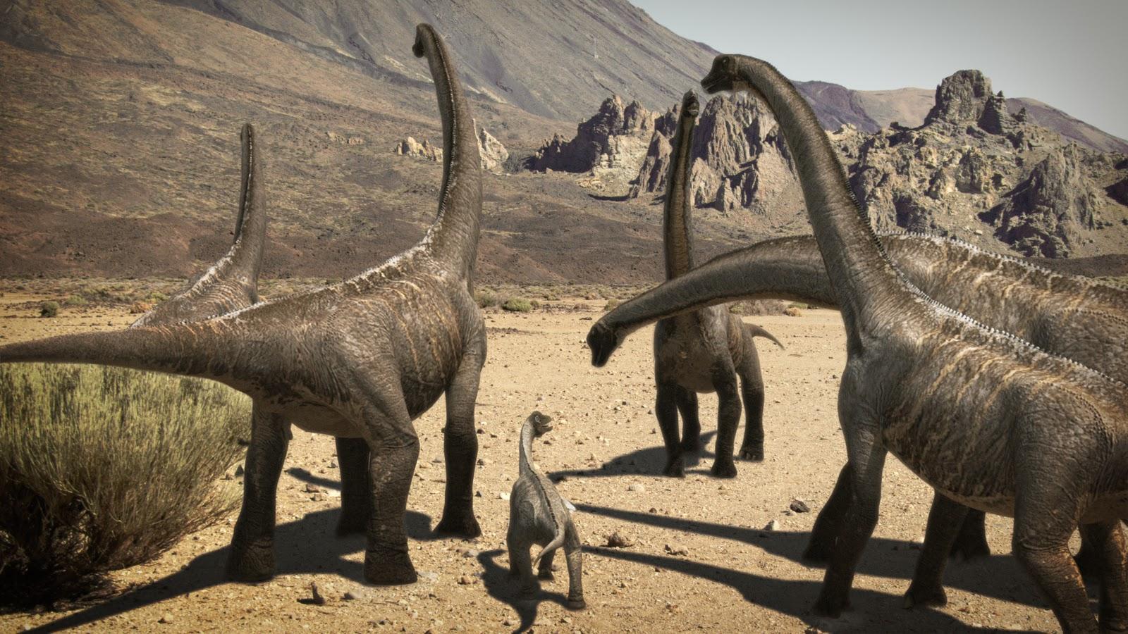 1600 x 900 jpeg 398kBBrachiosaurus
