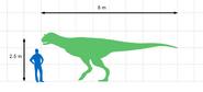 800px-Carnotaurus Size Chart