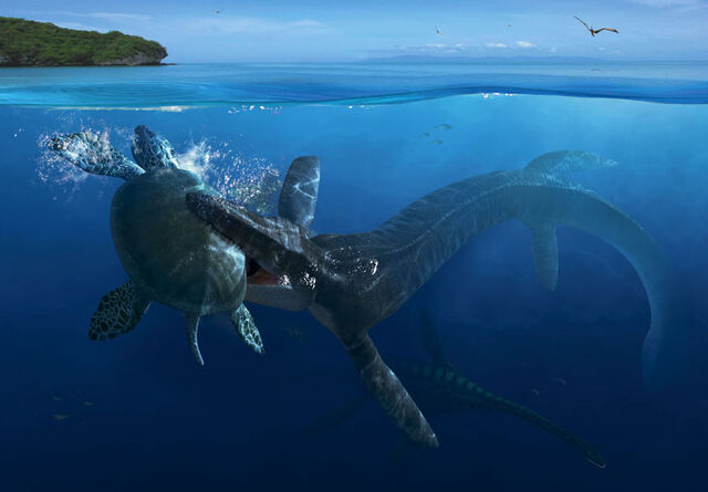 File:Tylosaurus Archelon FULL.jpg