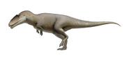 Life restoration of Carcharodontosaurus saharicus