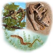 Portugalophis Diablophis Parviraptor illustration