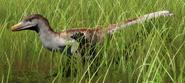 Velociraptor mongoliensis (Ashen Brindle)