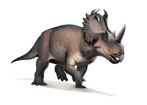 800px-FredCentrosaurus