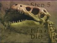 Step 5 Plan a Diet