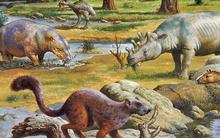 Paleogene