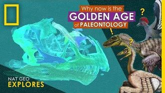 Why Now is the Golden Age of Paleontology Nat Geo Explores
