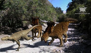 KosmoceratopsDino