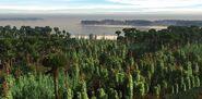 DevonianForest