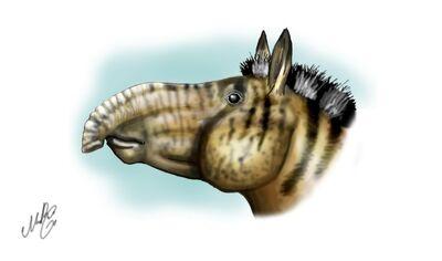 Proboscidipparion2