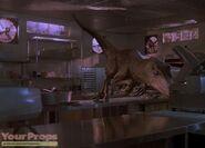Raptor-Claw