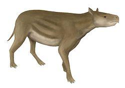 Heptodon posticus