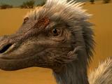 Velociraptor/Gallery