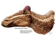 Edmontosaurus-crest