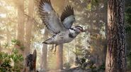 01 new species 181020.adapt.676.1