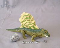 Dimetrodon jpd jphybrids