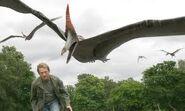 Primeval pteranodon